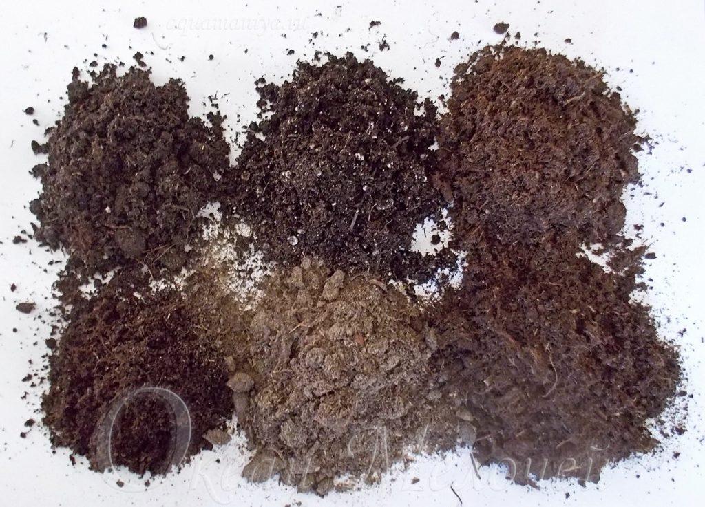 Какой состав грунта для петунии