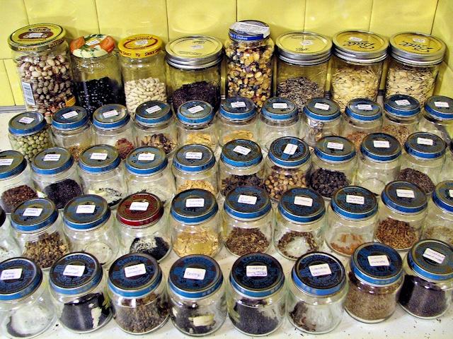 Как правильно хранить семена