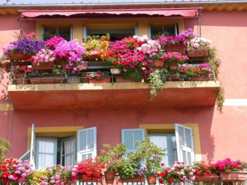 Декоративное оформление балкона
